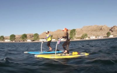 Stand UP Pedal Paddle Board? What Is It?