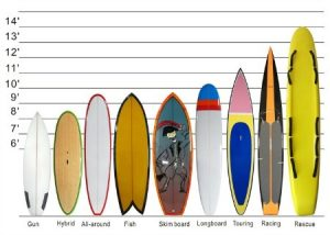 Paddle board styles